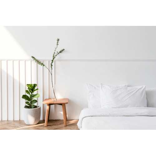 Four Home Decor Essentials That Promote Healthy Hair and Skin